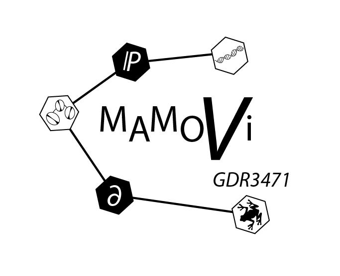 MAMOVI
